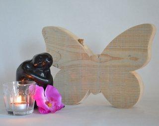 asbewaarder vlinder gebruikt steigerhout