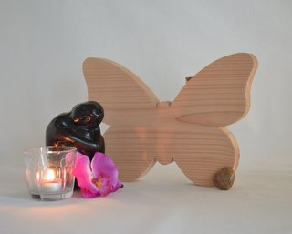 asbewaarder vlinder                 douglashout